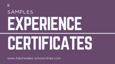 Experience Certificate Templates, Format, and Samples