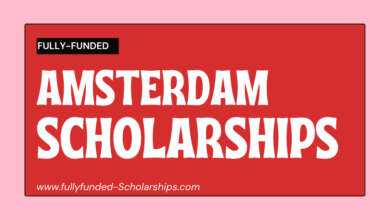 Amsterdam Excellence Scholarships (AES) Online Application form